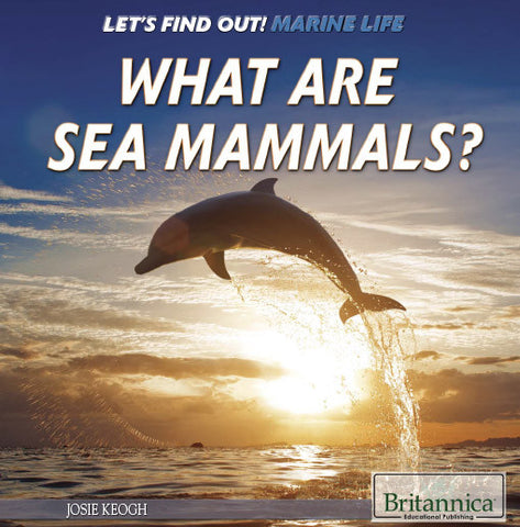 What Are Sea Mammals?
