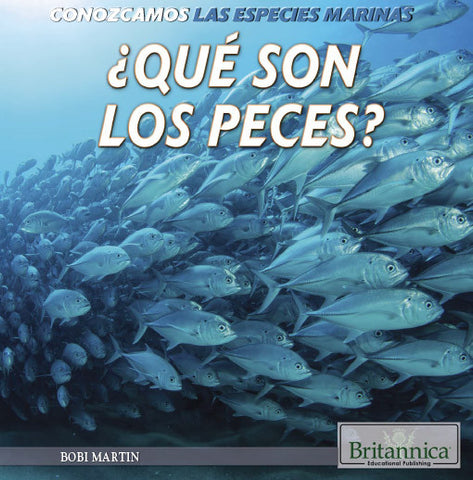 ¿Qué son los peces? (What Are Fish?)