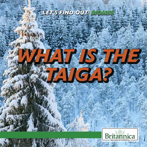 What Is the Taiga?