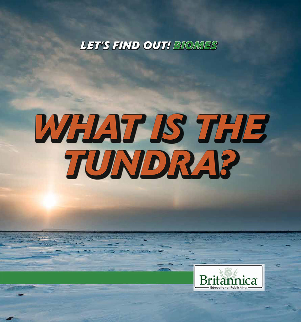 What Is the Tundra?