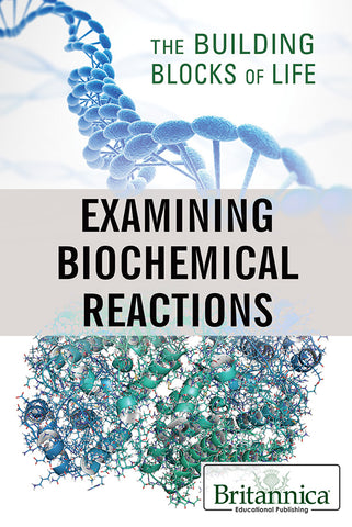 Examining Biochemical Reactions