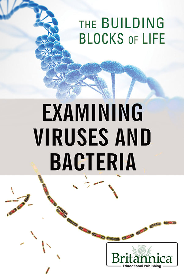 Examining Viruses and Bacteria