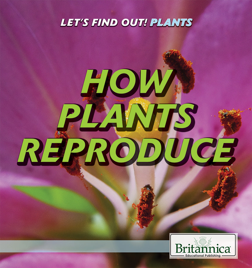 How Plants Reproduce
