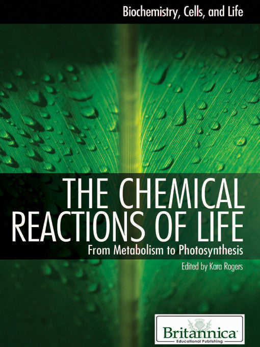 The Chemical Reactions of Life: From Metabolism to Photosynthesis