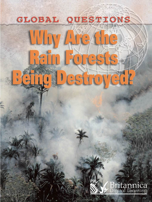Why Are the Rain Forests Being Destroyed?