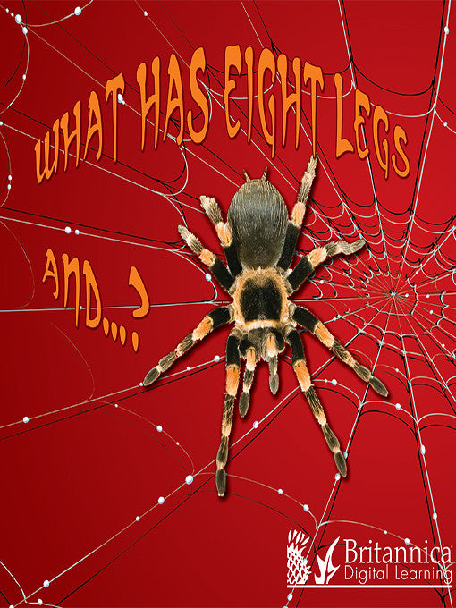 What Has Eight Legs and…?