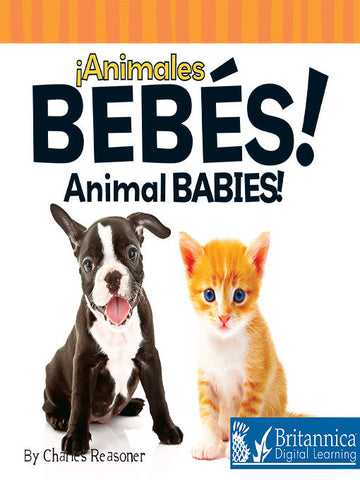 Animales bebés (Animal Babies)