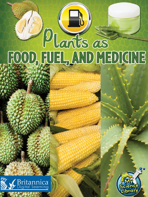 Plants as Food, Fuel, and Medicine