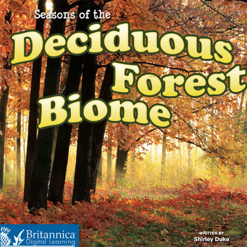 Seasons of the Deciduous Forest Biome