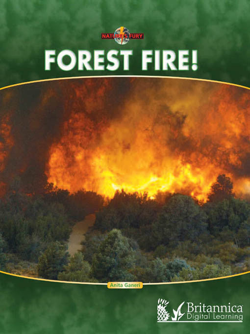 Forest Fire!