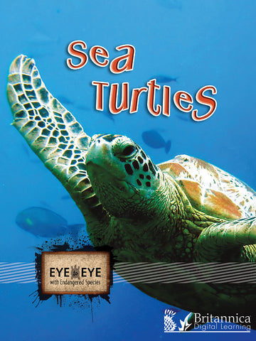 Eye to Eye with Endangered Species Series (NEW!)