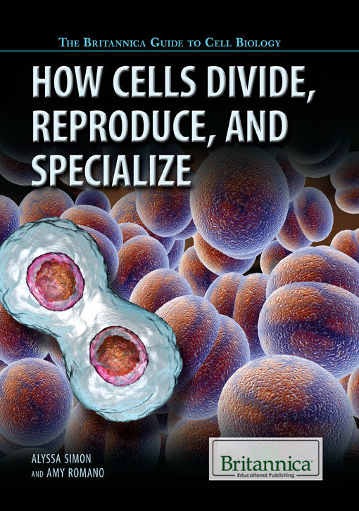 How Cells Divide, Reproduce, and Specialize