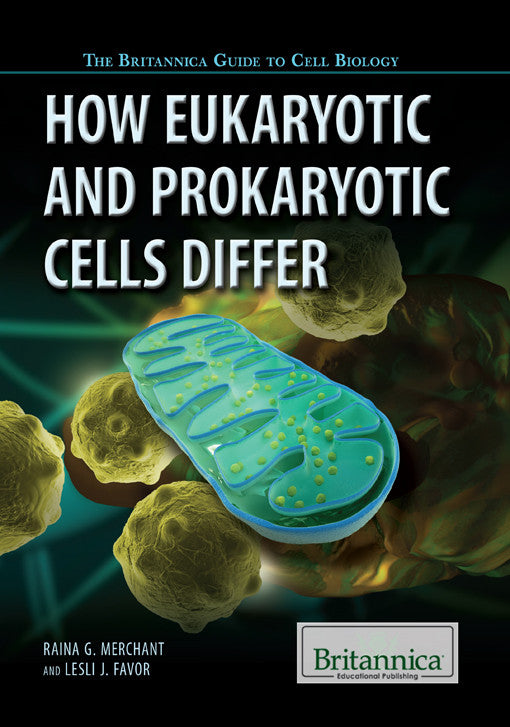 How Eukaryotic and Prokaryotic Cells Differ