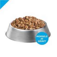 Load image into Gallery viewer, Purina Pro Plan Focus Adult Weight Management Turkey & Rice Entree Canned Dog Food