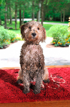 Load image into Gallery viewer, Dog Gone Smart Dirty Dog Large Doormats