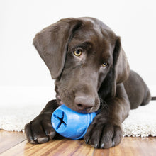 Load image into Gallery viewer, KONG Genius Mike Dog Toy