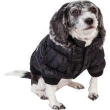 Load image into Gallery viewer, Pet Life Metallic Black Fashion Parka Insulated Dog Coat with Removable Hood