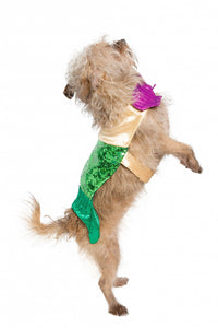 Pet Krewe Mermaid Dog Costume
