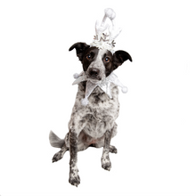 Load image into Gallery viewer, Pet Krewe Christmas Frozen Antler Silver Dog Costume