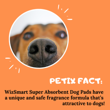 Load image into Gallery viewer, WizSmart Super All Day Dry Premium Dog Pads