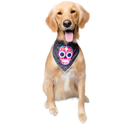 Pet Krewe Glow In The Dark Skull Bandana Costume for Cats & Dogs