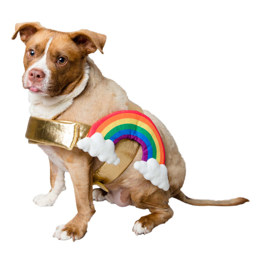 Pet Krewe Rainbow Costume for Cats & Dogs