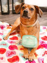 Load image into Gallery viewer, Pink Papyrus Ariel Leash, Delilah Bandana & Leilani BFF Mini Bundle Gift Set