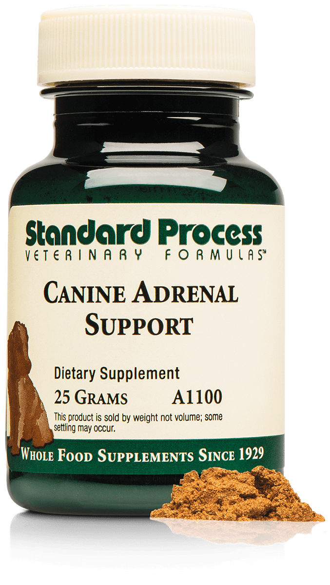 Canine Adrenal Support, 25 g