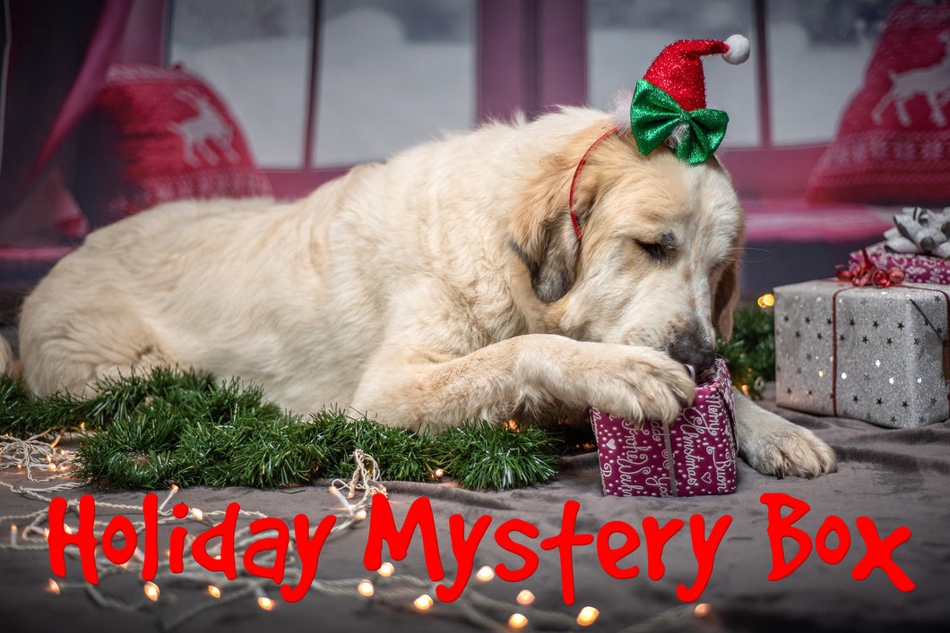Holiday Mystery Box for Dogs