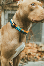 Load image into Gallery viewer, Wander & Co. MKE Flag Collar