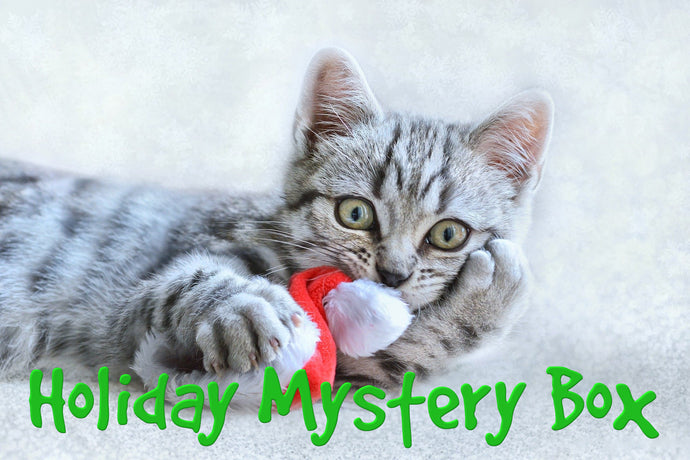 Holiday Mystery Box for Cats