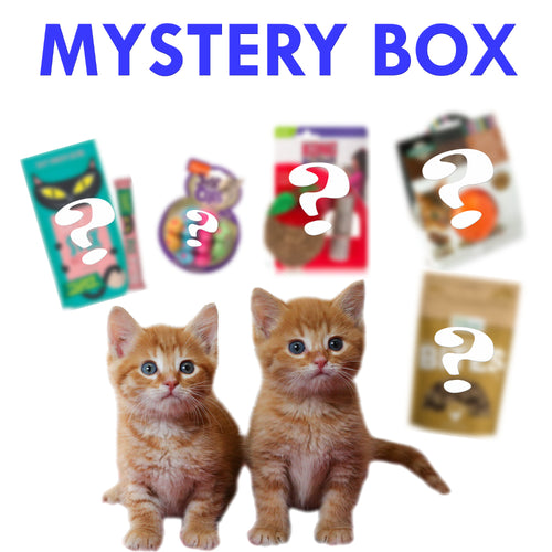 $19.99 Mystery Box for Cats
