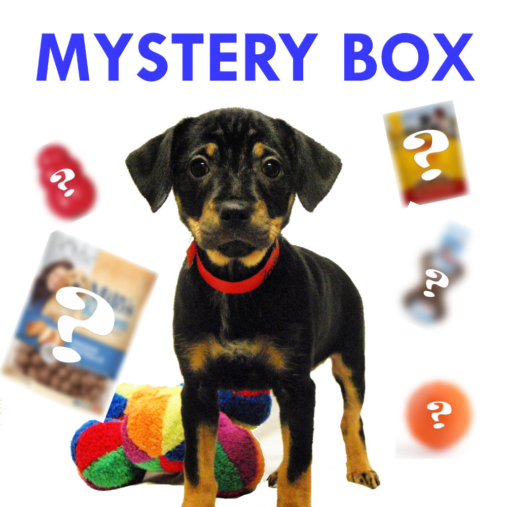 $19.99 Mystery Box for Dogs