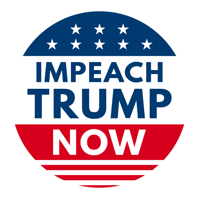 Impeach Trump Now 4