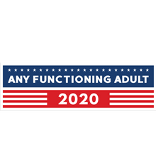 Load image into Gallery viewer, Any Functioning Adult 2020 Bumper Sticker - Any Sane Adult 2020