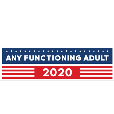 Any Functioning Adult 2020 Bumper Sticker - Any Sane Adult 2020