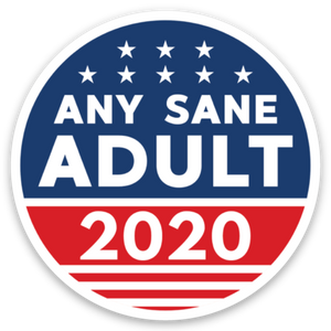 "Any Sane Adult 2020 4"" Static Cling Decal - Any Sane Adult 2020"