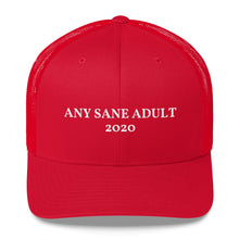 Load image into Gallery viewer, Any Sane Adult 2020 Trucker Hat - Any Sane Adult 2020