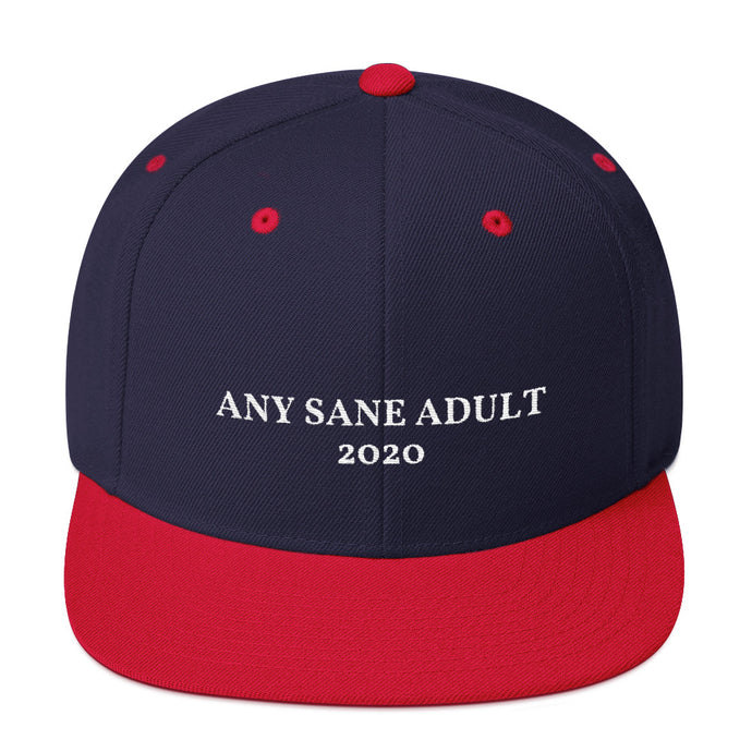 Any Sane Adult 2020 Flat Bill Snapback Hat - Any Sane Adult 2020