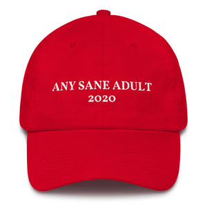 Any Sane Adult 2020 Baseball Cap - Made in the USA - Any Sane Adult 2020