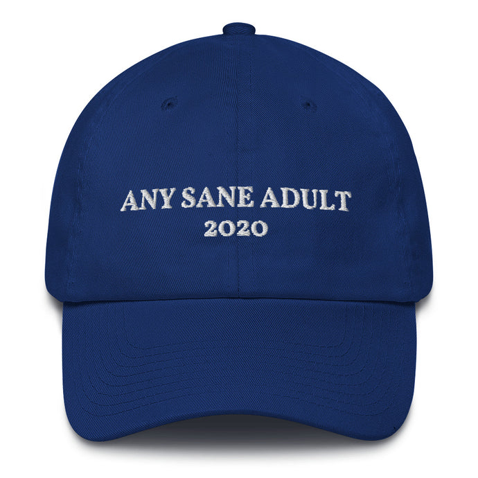 Any Sane Adult 2020 Baseball Cap - Made in the USA
