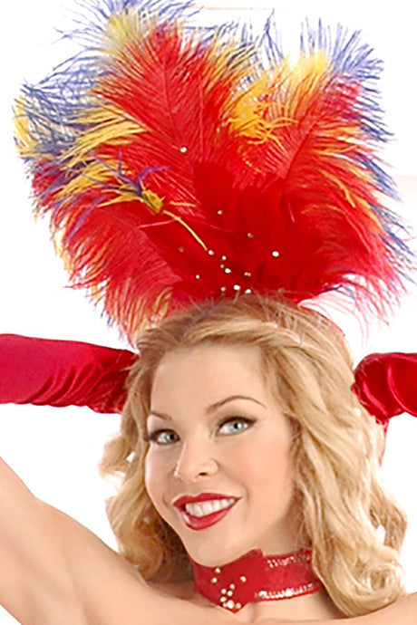 Macaw Headpiece