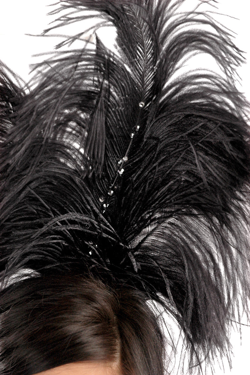 Black Swan Headpiece