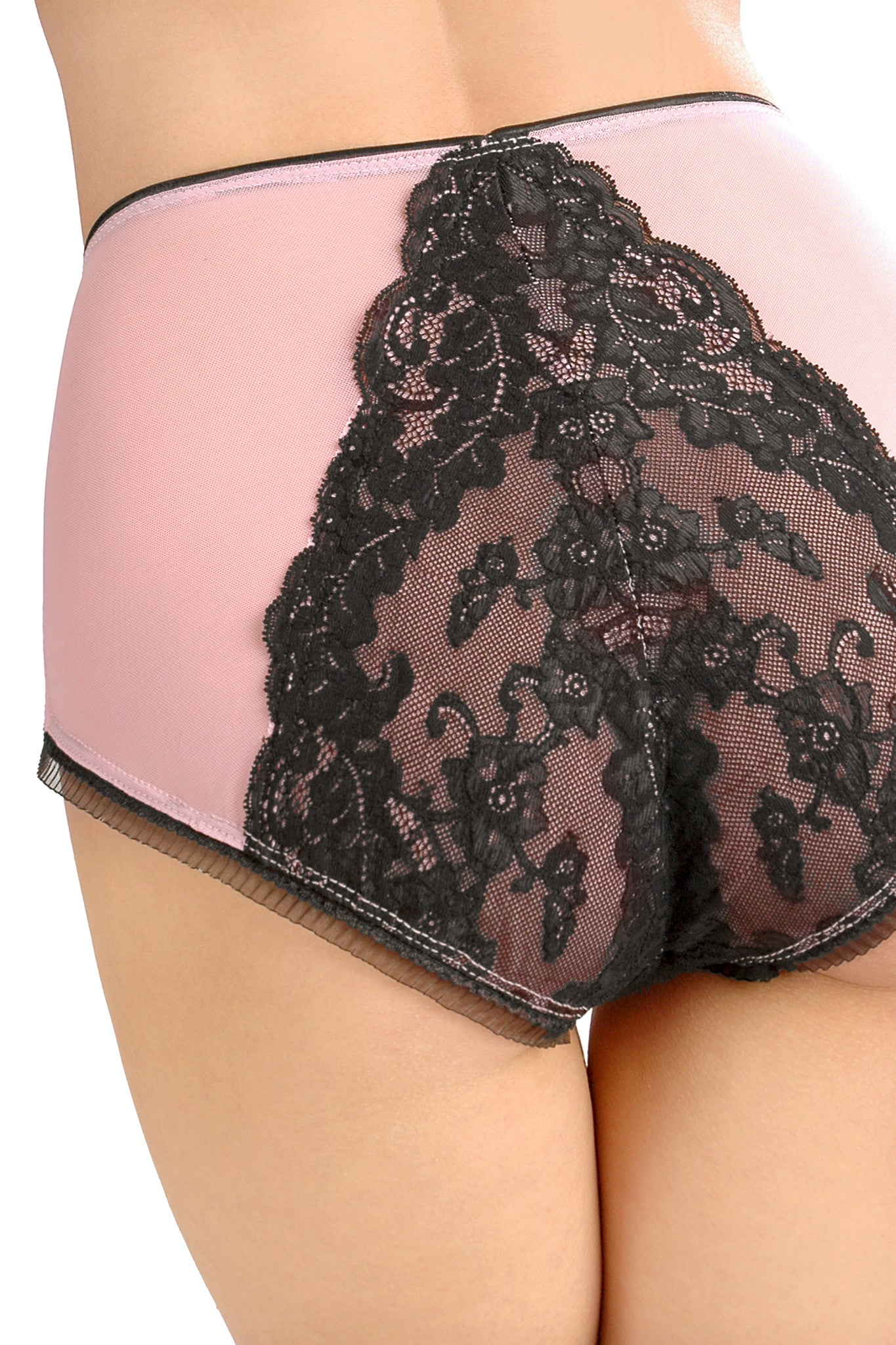 Tempest High Waisted Panty