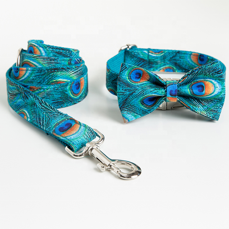 Peacock Collar Set