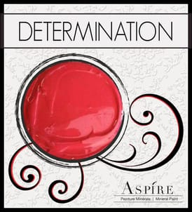Determination - Aspire Mineral Paint