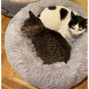 Calming Cat Bed - Calms, Relaxes and Eases Your Pet's Anxiety.  Give Your Cat The Gift Of The Best Sleep Ever.