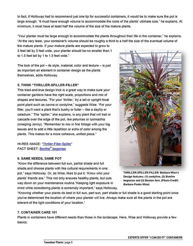 Tesselar article to create your own planter