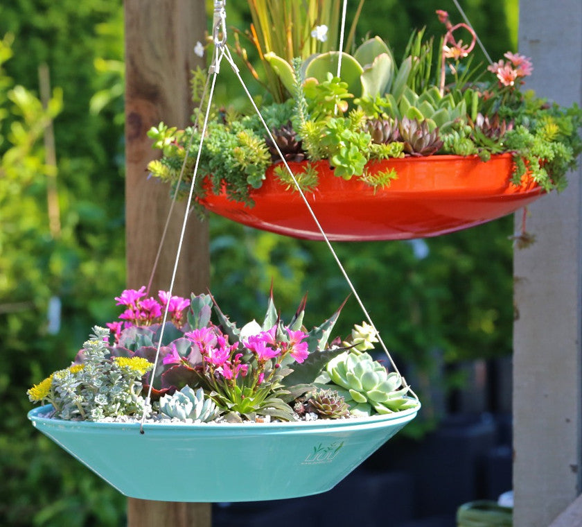 Hover Dish Planters