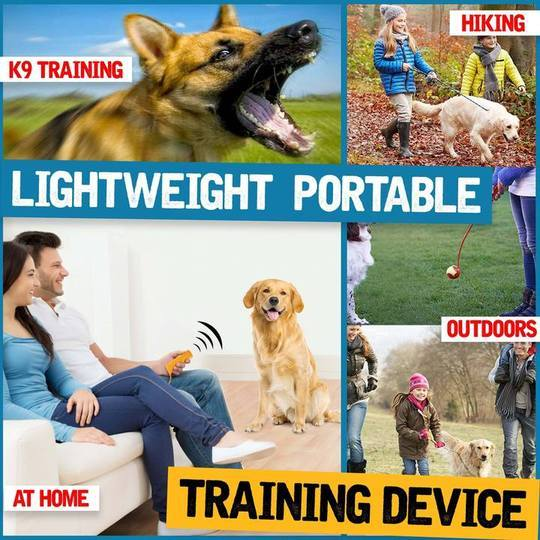 3-in-1 Pet Training Devices